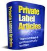 Thumbnail 25 Social Networking Website PLR Articles