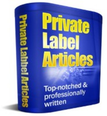 Product picture Internet Marketing Expert Article Pack with Private Label Ri