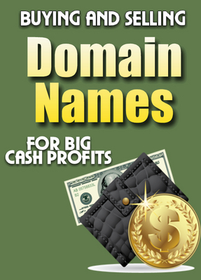 Product picture Buying and Selling Domain Names For Big Cash Profits